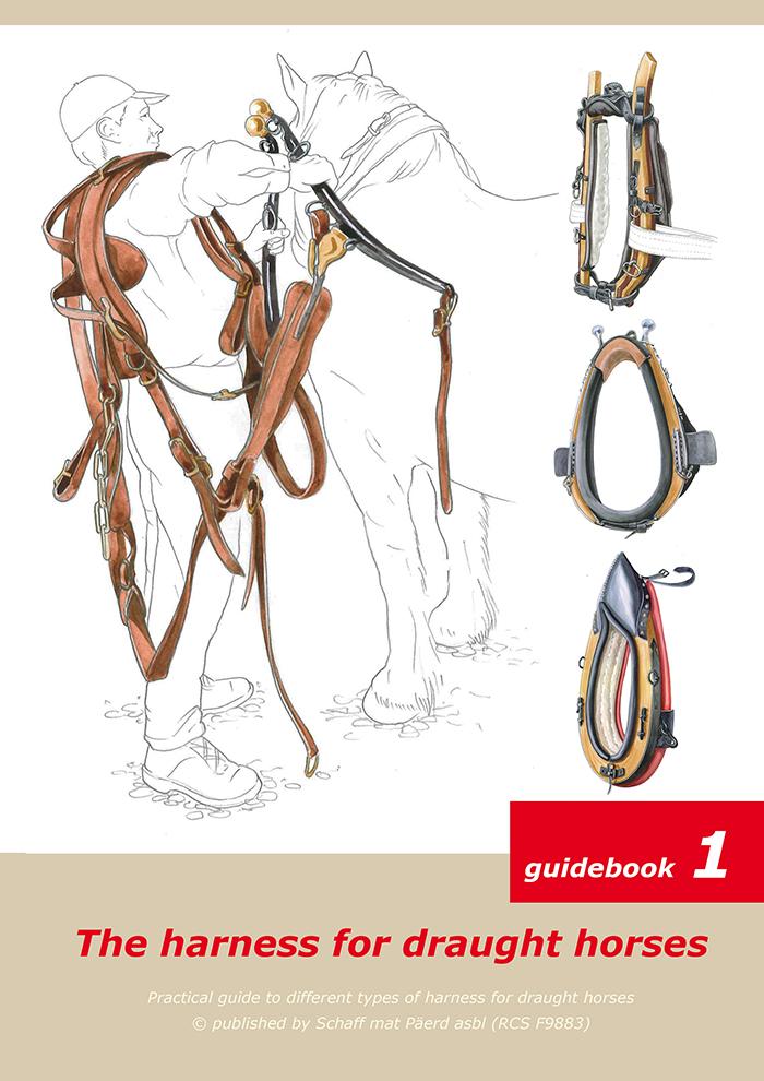 Guida ai finimenti 1  (UK).pdf stampa