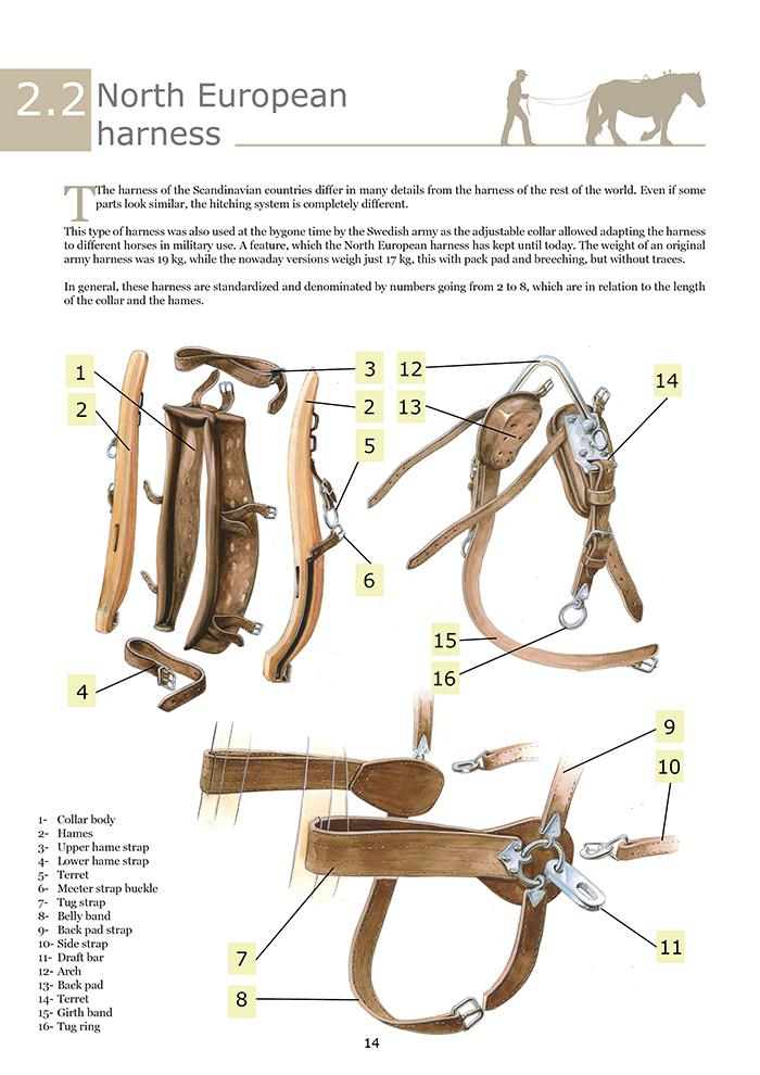 Guida ai finimenti 1  (UK).pdf stampa14